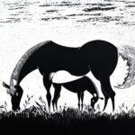 Foal with Mother, 2012, scratchboard, 30×42