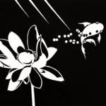 Lotus, 2013, scratchboard, 30×40